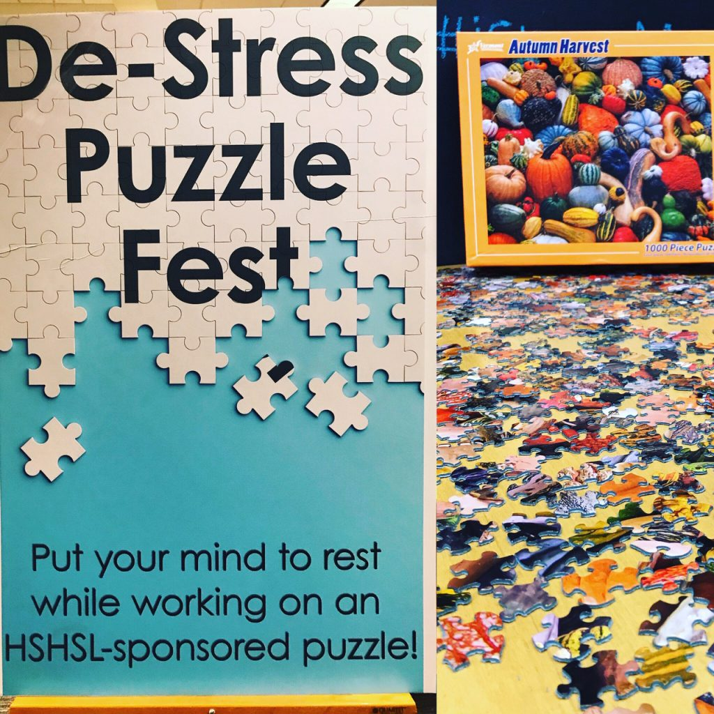 puzzles at hshsl